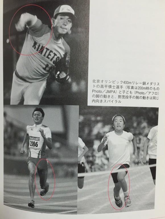 image(68)
